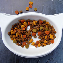Pet Food Coupons & Offers